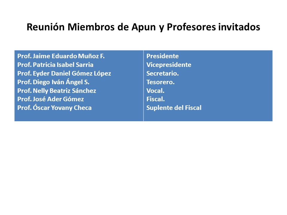 Reunión Miembros de Apun y Profesores invitados Prof.