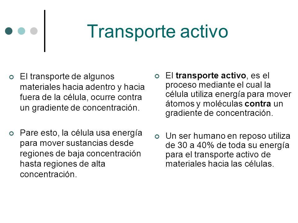 Transporte activo El transporte de algunos materiales hacia adentro y hacia fuera de la célula, ocurre contra un gradiente de concentración. Pare esto