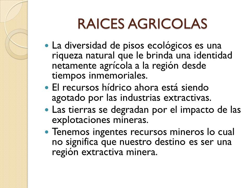 RAICES AGRICOLAS La diversidad de pisos ecológicos es una riqueza natural que le brinda una identidad netamente agrícola a la región desde tiempos inm