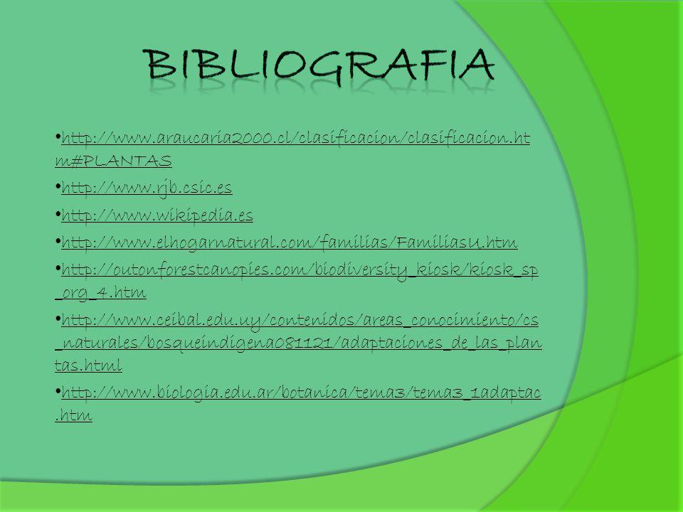 http://www.araucaria2000.cl/clasificacion/clasificacion.ht m#PLANTAS http://www.rjb.csic.es http://www.wikipedia.es http://www.elhogarnatural.com/fami