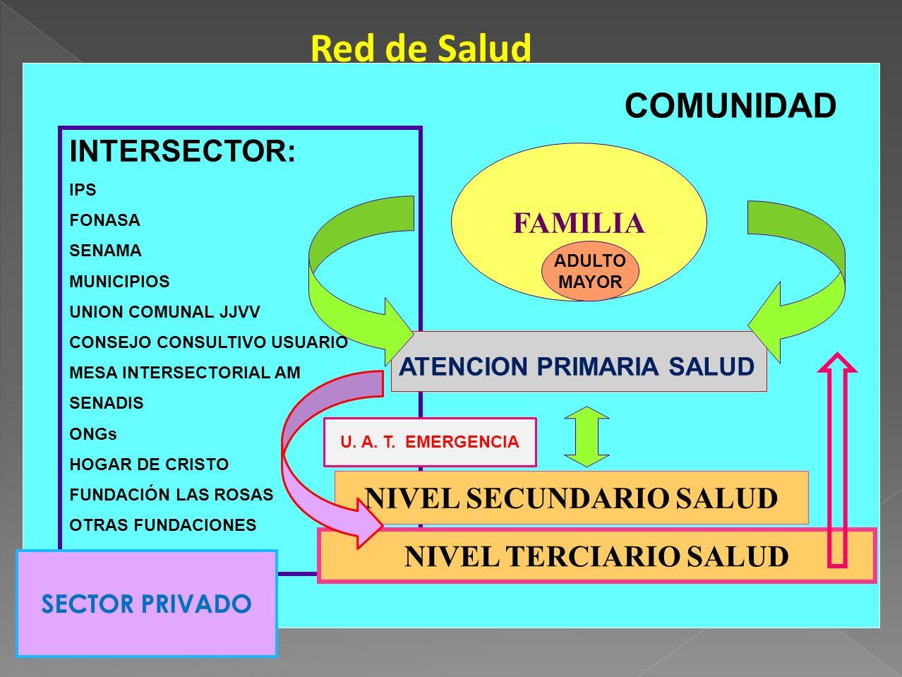 Red de Salud COMUNIDAD FAMILIA ADULTO MAYOR INTERSECTOR: IPS FONASA SENAMA MUNICIPIOS UNION COMUNAL JJVV CONSEJO CONSULTIVO USUARIO MESA INTERSECTORIA