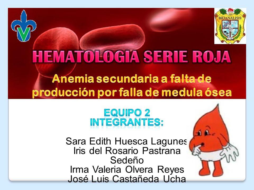 I)Anemia Sideroblástica: Hereditaria: ligada a cromosoma X II) Anemia Sideroblástica Adquirida: A.