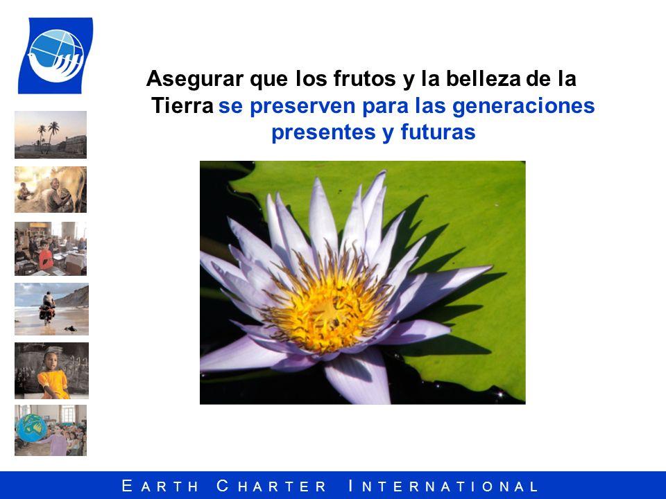 E A R T H C H A R T E R I N T E R N A T I O N A L Asegurar que los frutos y la belleza de la Tierra se preserven para las generaciones presentes y fut