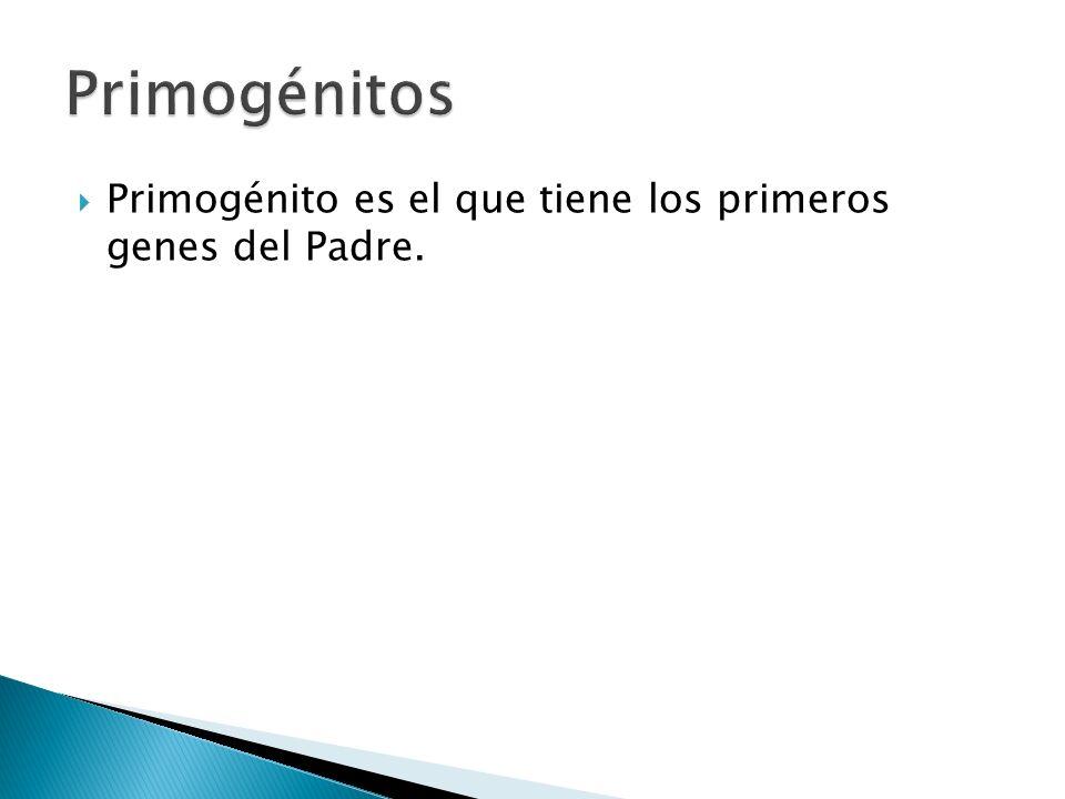 Primogénito es el que tiene los primeros genes del Padre.