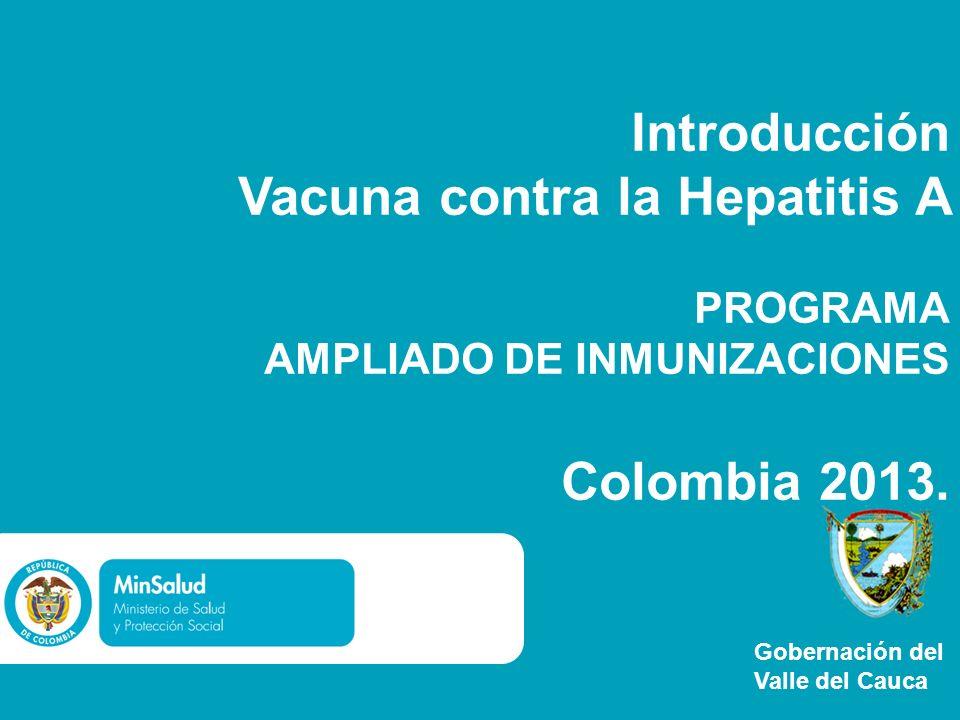 Introducción Vacuna contra la Hepatitis A PROGRAMA AMPLIADO DE INMUNIZACIONES Colombia 2013. Gobernación del Valle del Cauca