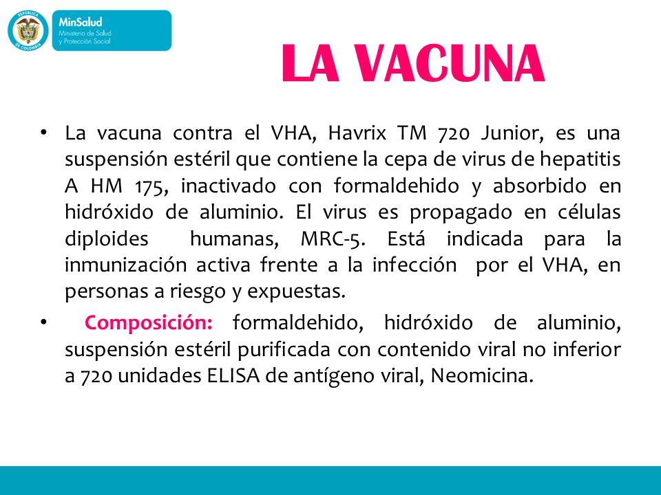 LA VACUNA La vacuna contra el VHA, Havrix TM 720 Junior, es una suspensión estéril que contiene la cepa de virus de hepatitis A HM 175, inactivado con