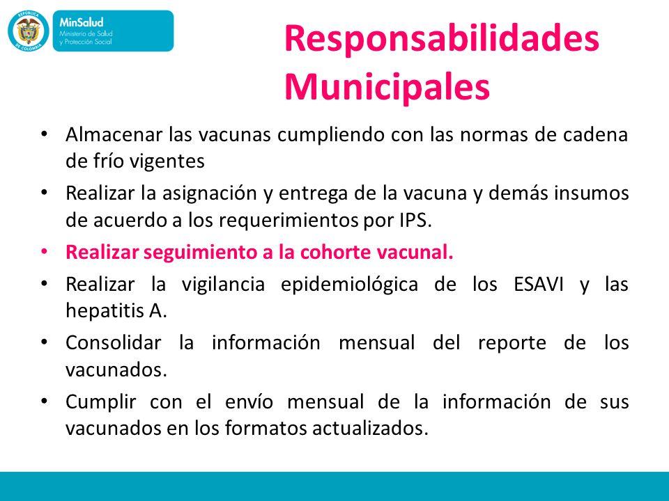 Responsabilidades Municipales Almacenar las vacunas cumpliendo con las normas de cadena de frío vigentes Realizar la asignación y entrega de la vacuna