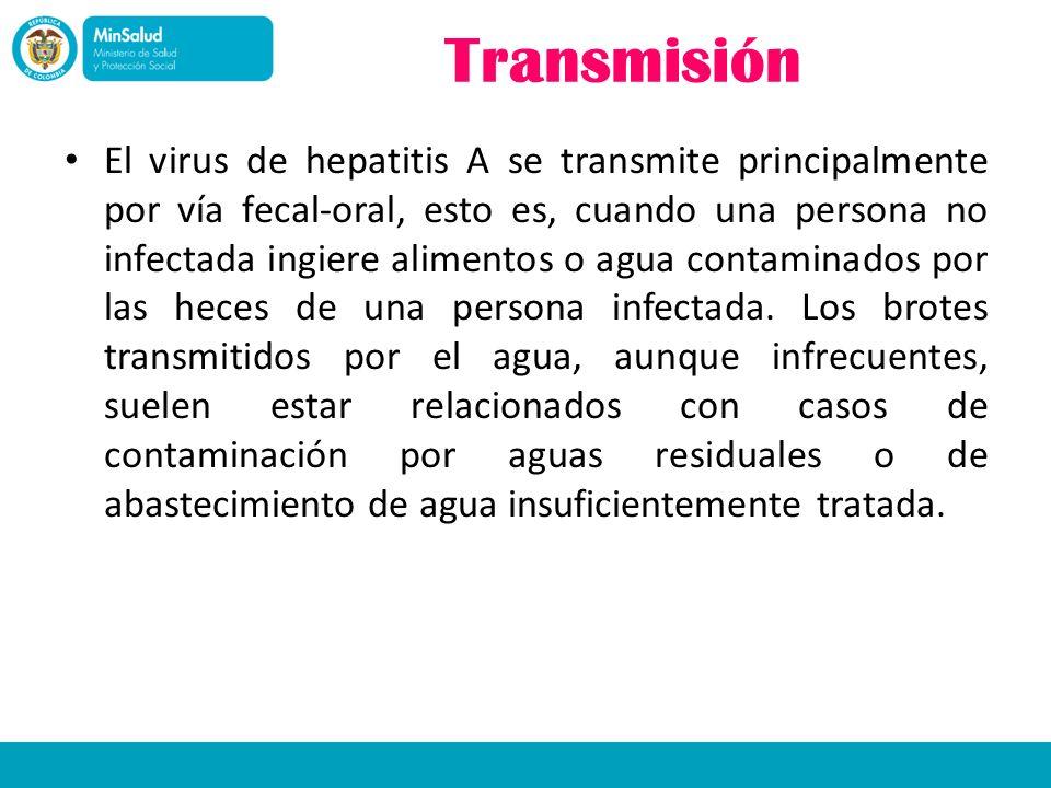 Transmisión El virus de hepatitis A se transmite principalmente por vía fecal-oral, esto es, cuando una persona no infectada ingiere alimentos o agua
