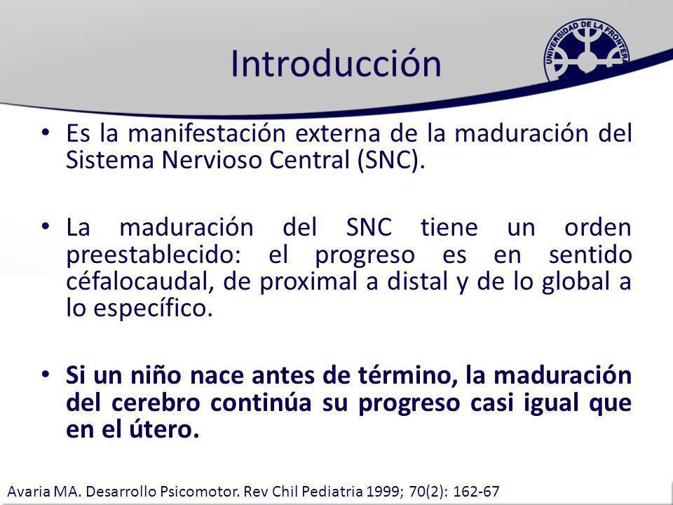 Tiempos Primordiales Existen las llamadas ventanas de oportunidades Clase Desarrollo Psicomotor; Dra Lilia Fernandez; UFRO