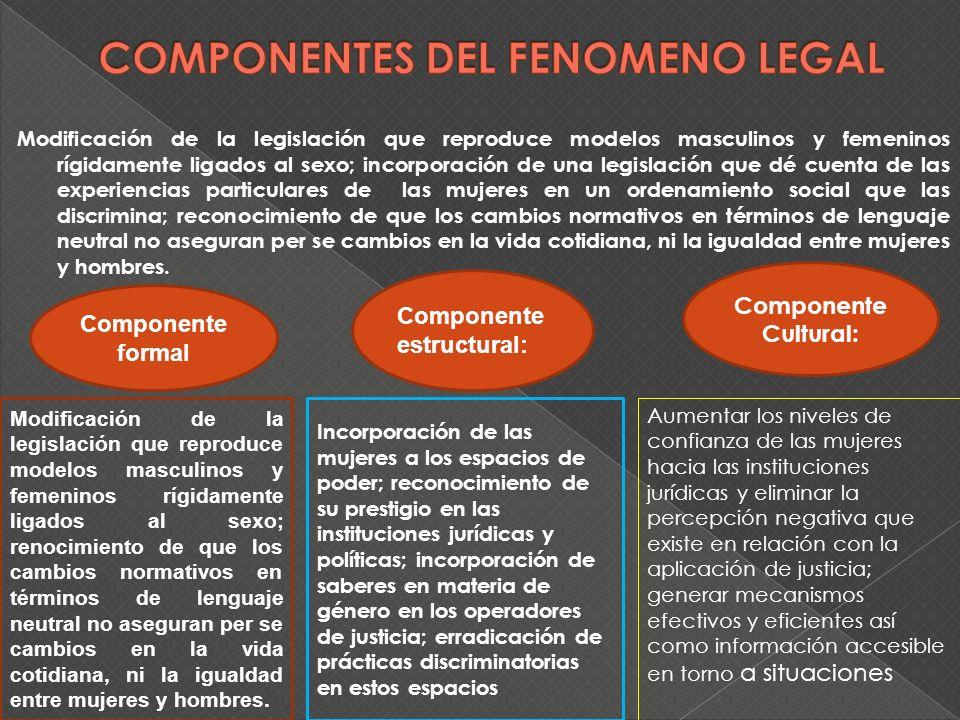 Modificación de la legislación que reproduce modelos masculinos y femeninos rígidamente ligados al sexo; incorporación de una legislación que dé cuent