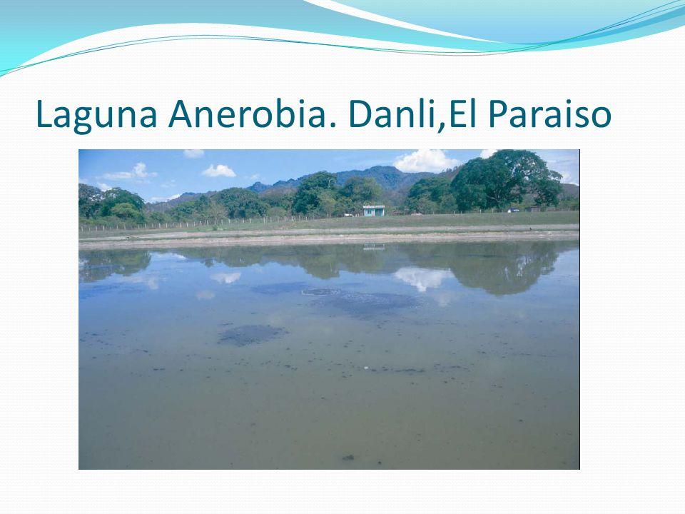 Laguna Anerobia. Danli,El Paraiso