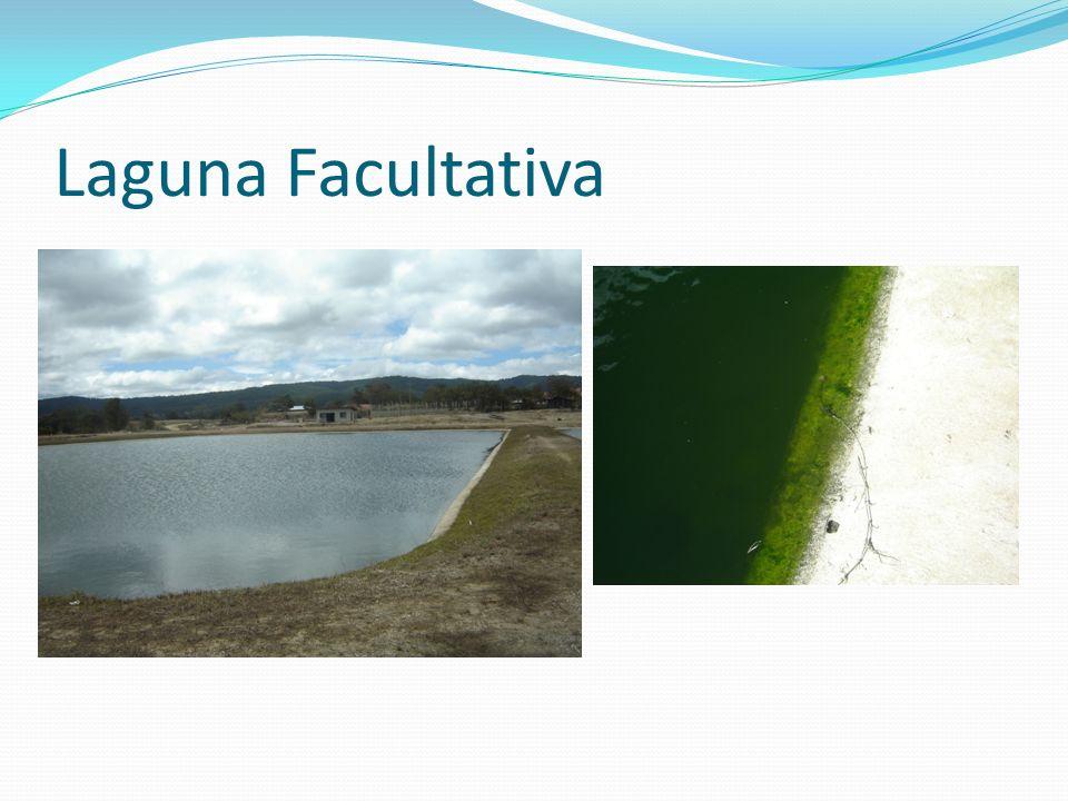 Laguna Facultativa