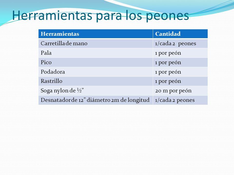 Herramientas para los peones HerramientasCantidad Carretilla de mano1/cada 2 peones Pala1 por peón Pico1 por peón Podadora1 por peón Rastrillo1 por pe