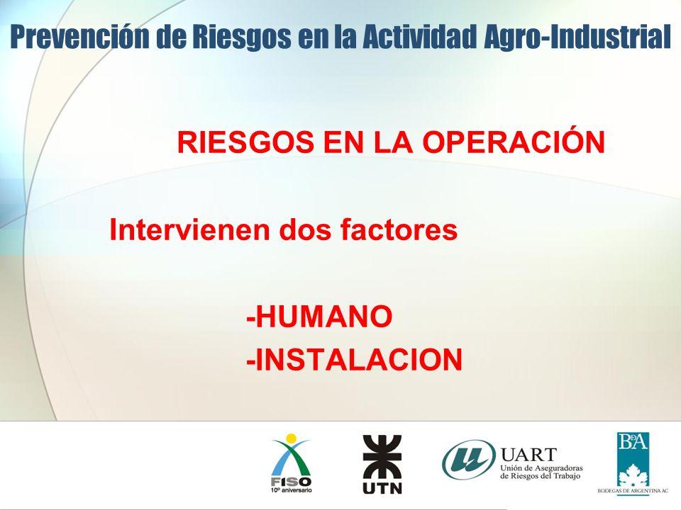 RIESGOS EN LA OPERACIÓN Intervienen dos factores -HUMANO -INSTALACION Prevención de Riesgos en la Actividad Agro-Industrial