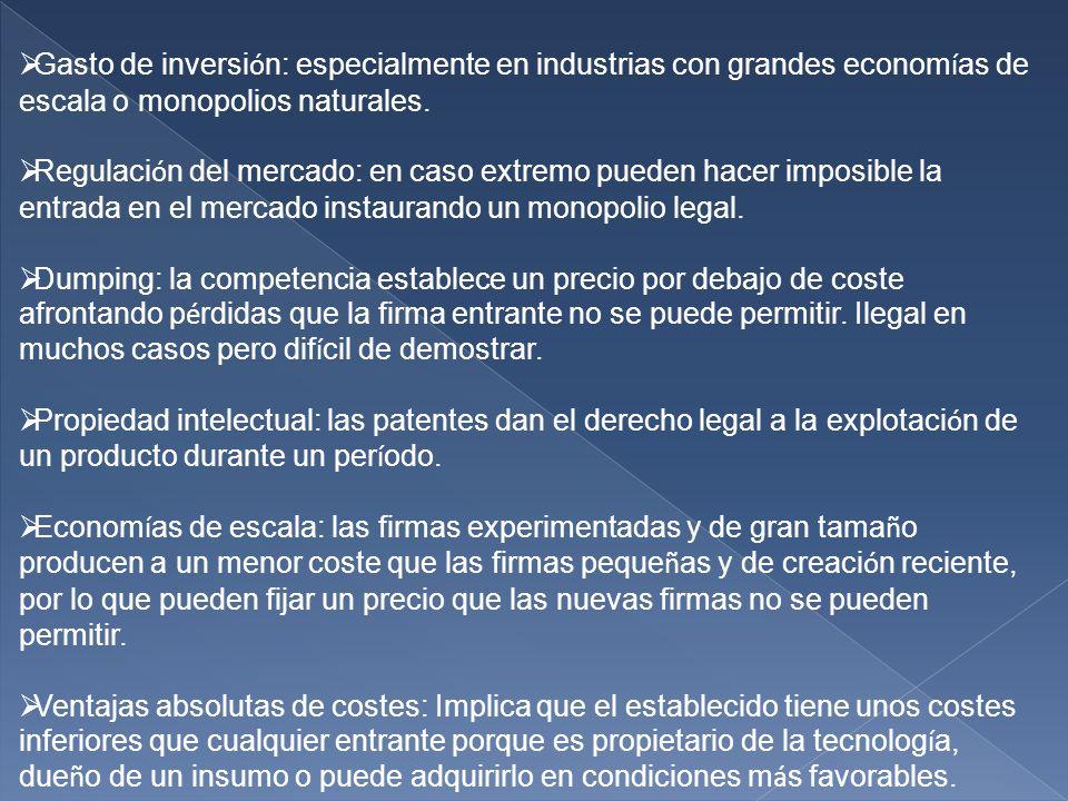 Gasto de inversi ó n: especialmente en industrias con grandes econom í as de escala o monopolios naturales.