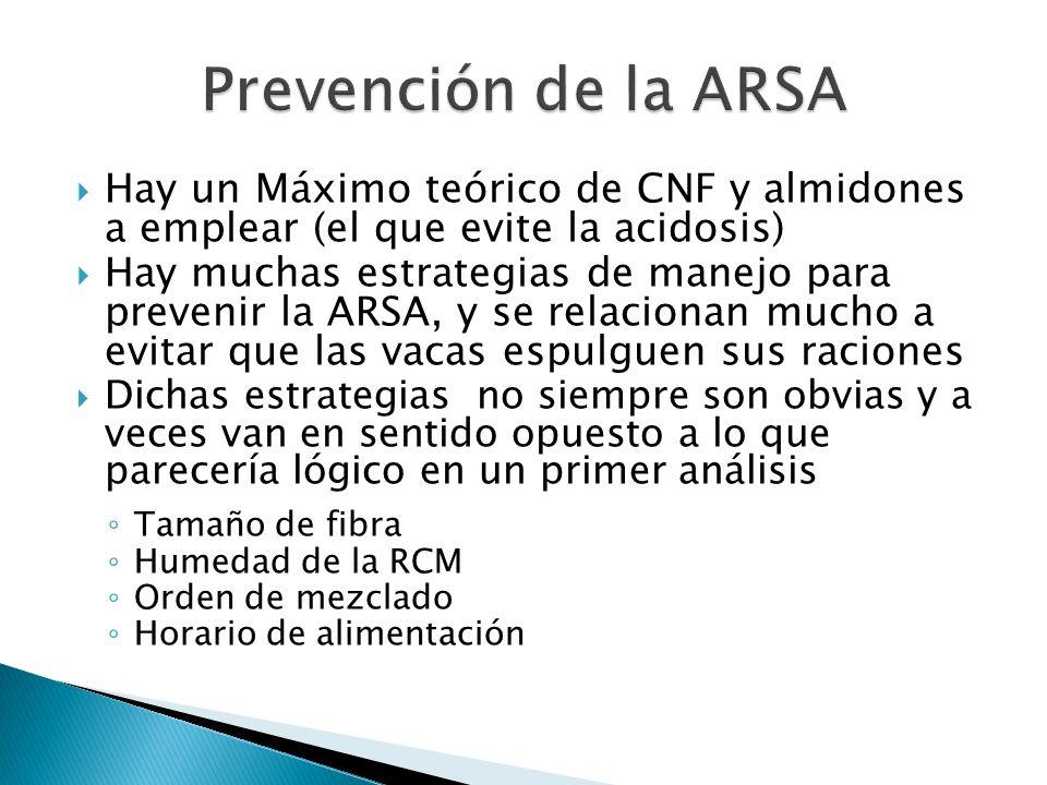 Hay un Máximo teórico de CNF y almidones a emplear (el que evite la acidosis) Hay muchas estrategias de manejo para prevenir la ARSA, y se relacionan