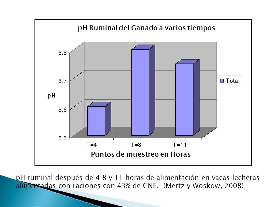 pH ruminal después de 4 8 y 11 horas de alimentación en vacas lecheras alimentadas con raciones con 43% de CNF. (Mertz y Woskow, 2008) pH Ruminal del