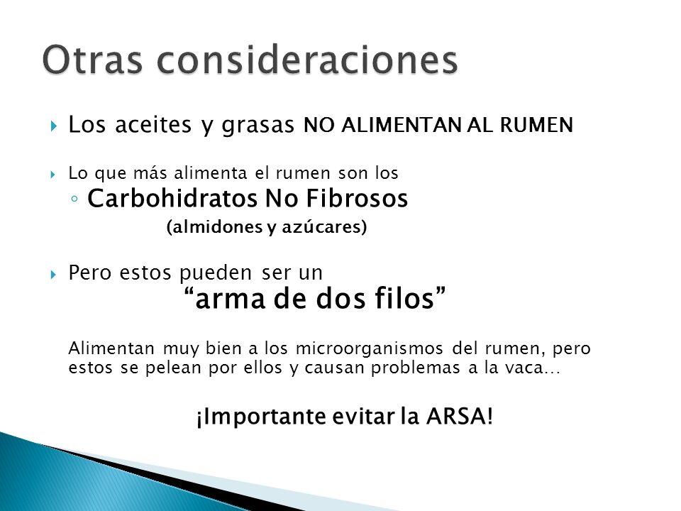 Los aceites y grasas NO ALIMENTAN AL RUMEN Lo que más alimenta el rumen son los Carbohidratos No Fibrosos (almidones y azúcares) Pero estos pueden ser