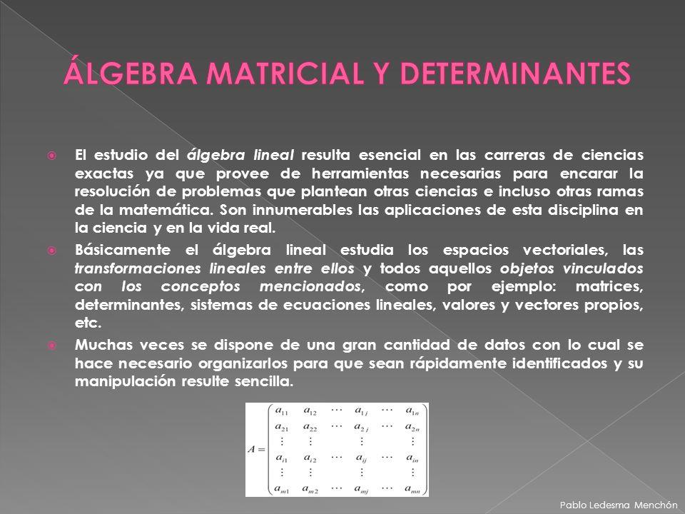 El estudio del álgebra lineal resulta esencial en las carreras de ciencias exactas ya que provee de herramientas necesarias para encarar la resolución