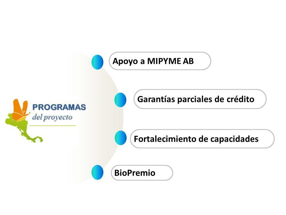 Apoyo a MIPYME AB Garantías parciales de crédito Fortalecimiento de capacidades BioPremio PROGRAMAS del proyecto