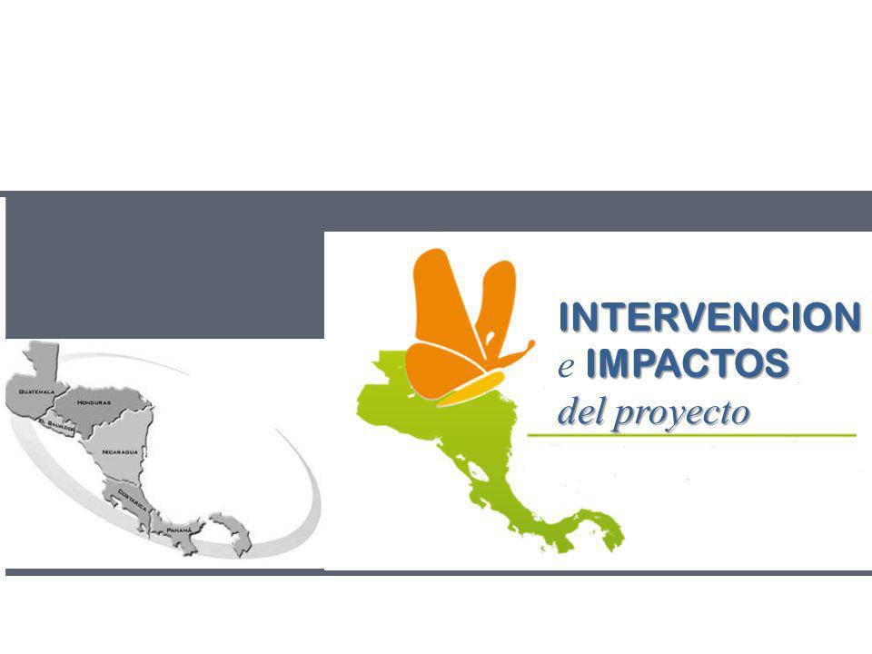 INTERVENCION IMPACTOS e IMPACTOS del proyecto