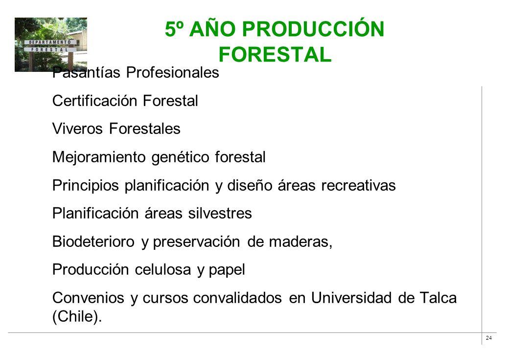 24 5º AÑO PRODUCCIÓN FORESTAL Pasantías Profesionales Certificación Forestal Viveros Forestales Mejoramiento genético forestal Principios planificació
