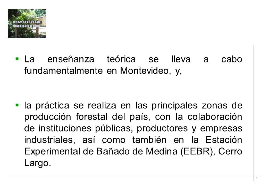4 La enseñanza teórica se lleva a cabo fundamentalmente en Montevideo, y, la práctica se realiza en las principales zonas de producción forestal del p