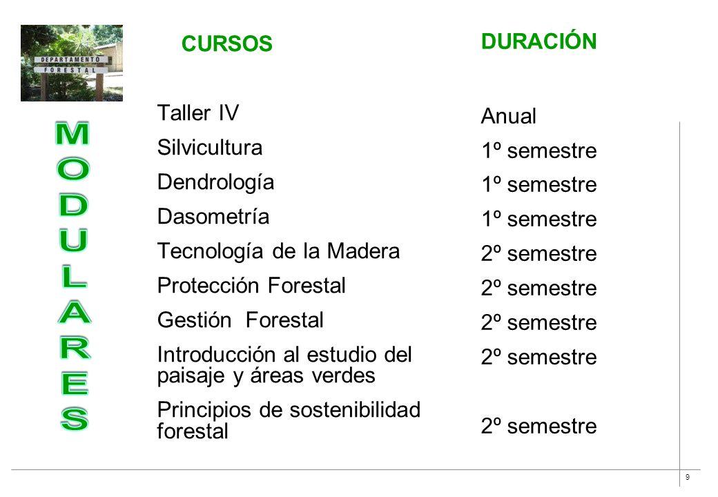 9 CURSOS Taller IV Silvicultura Dendrología Dasometría Tecnología de la Madera Protección Forestal Gestión Forestal Introducción al estudio del paisaj