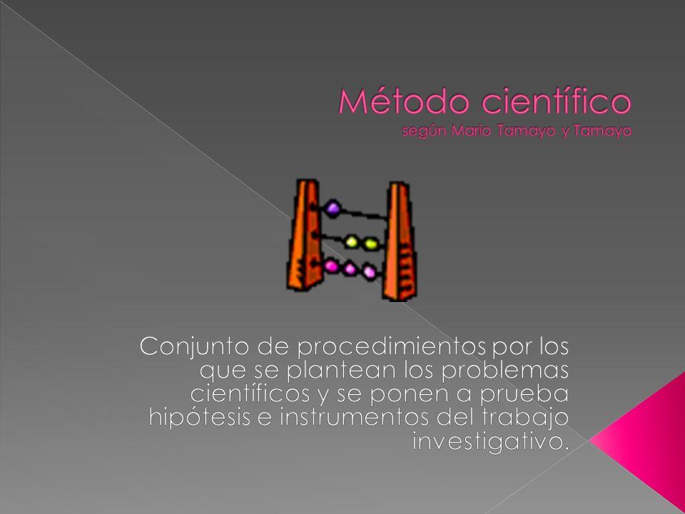 Aquí, se desarrollan varios procesos: hipótesis; inducción, deducción, análisis y síntesis