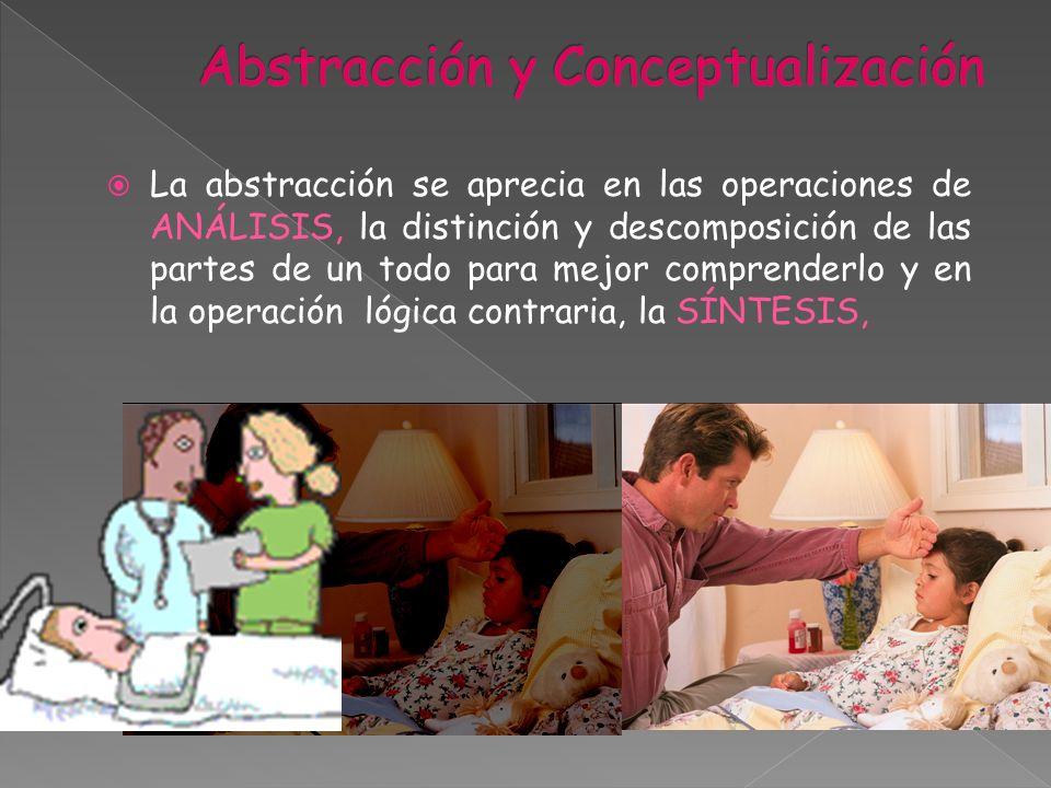 La abstracción se aprecia en las operaciones de ANÁLISIS, la distinción y descomposición de las partes de un todo para mejor comprenderlo y en la oper