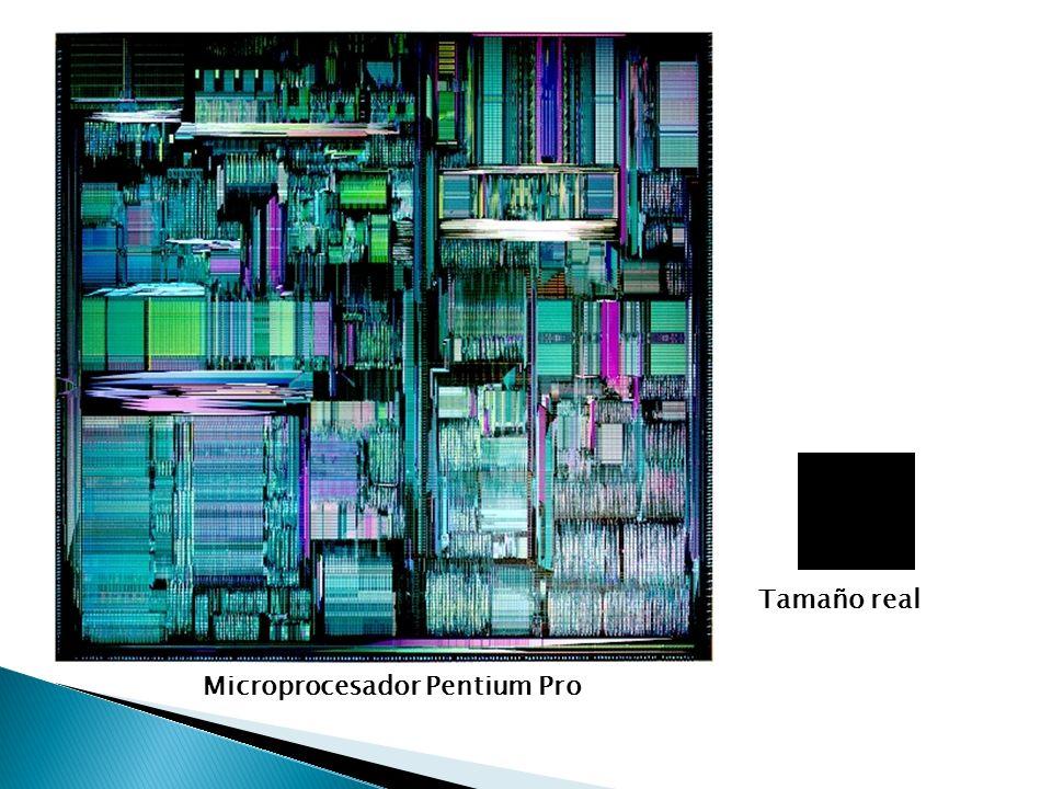 Unidad Central de Procesamiento Microprocesador Mainboard o Motherboard Ranuras de expansión PCI Ranuras de expansión de memoria Socket para procesador