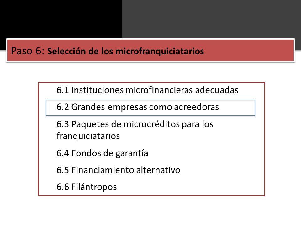 6.1 Instituciones microfinancieras adecuadas 6.2 Grandes empresas como acreedoras 6.3 Paquetes de microcréditos para los franquiciatarios 6.4 Fondos d