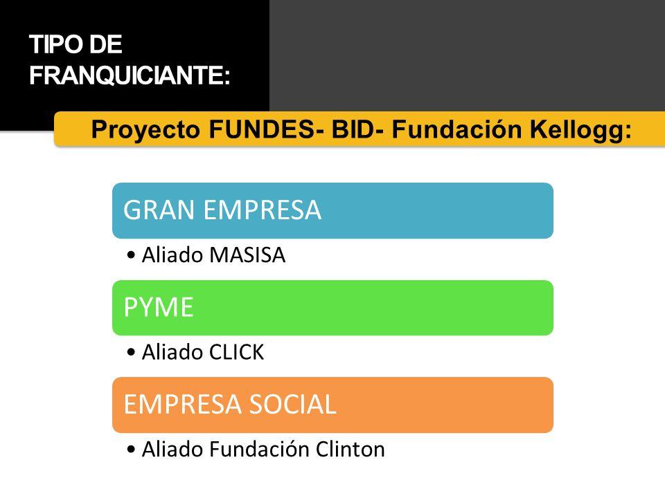 TIPO DE FRANQUICIANTE: GRAN EMPRESA Aliado MASISA PYME Aliado CLICK EMPRESA SOCIAL Aliado Fundación Clinton Proyecto FUNDES- BID- Fundación Kellogg: