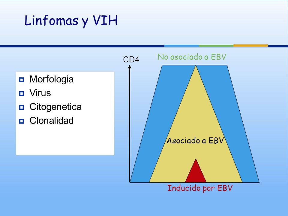Morfologia Virus Citogenetica Clonalidad Linfomas y VIH CD4 No asociado a EBV Inducido por EBV Asociado a EBV