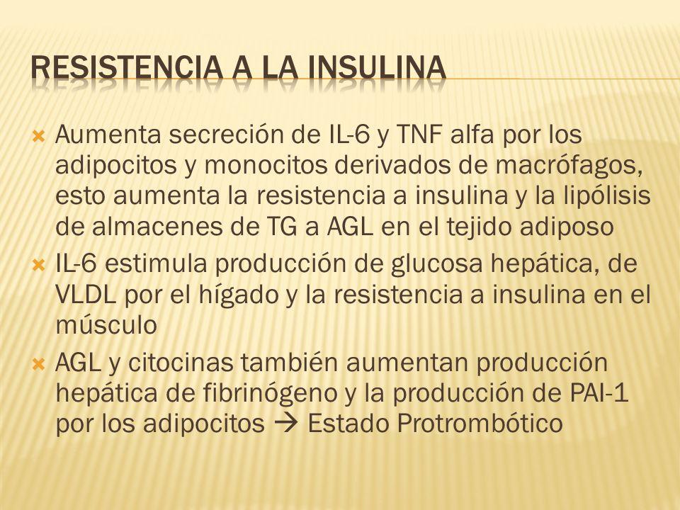 Aumenta secreción de IL-6 y TNF alfa por los adipocitos y monocitos derivados de macrófagos, esto aumenta la resistencia a insulina y la lipólisis de