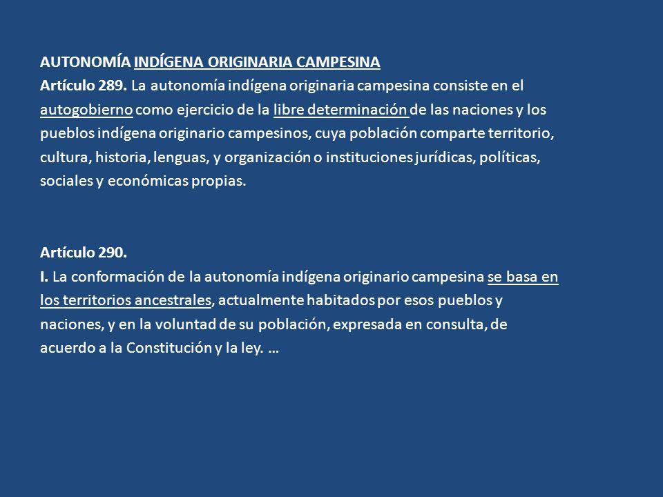 AUTONOMÍA INDÍGENA ORIGINARIA CAMPESINA Artículo 289. La autonomía indígena originaria campesina consiste en el autogobierno como ejercicio de la libr