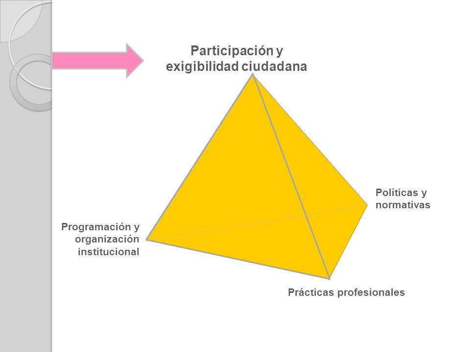 Políticas y normativas Programación y organización institucional Prácticas profesionales Participación y exigibilidad ciudadana
