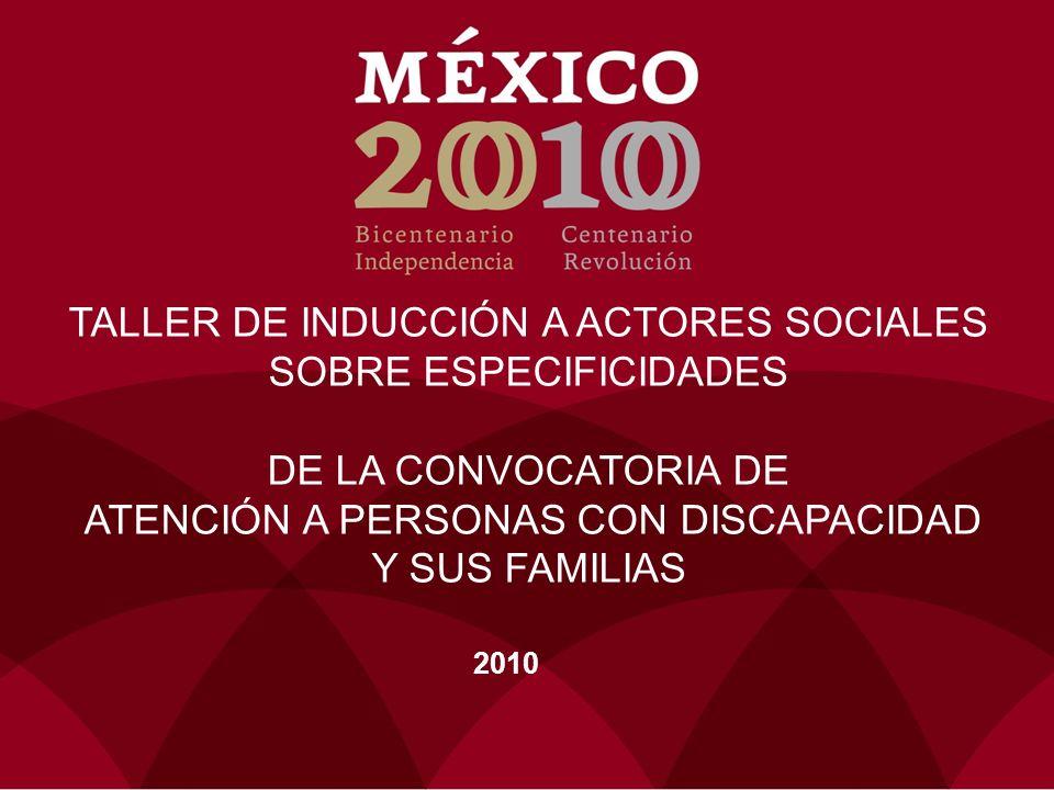 TALLER DE INDUCCIÓN A ACTORES SOCIALES SOBRE ESPECIFICIDADES DE LA CONVOCATORIA DE ATENCIÓN A PERSONAS CON DISCAPACIDAD Y SUS FAMILIAS 2010
