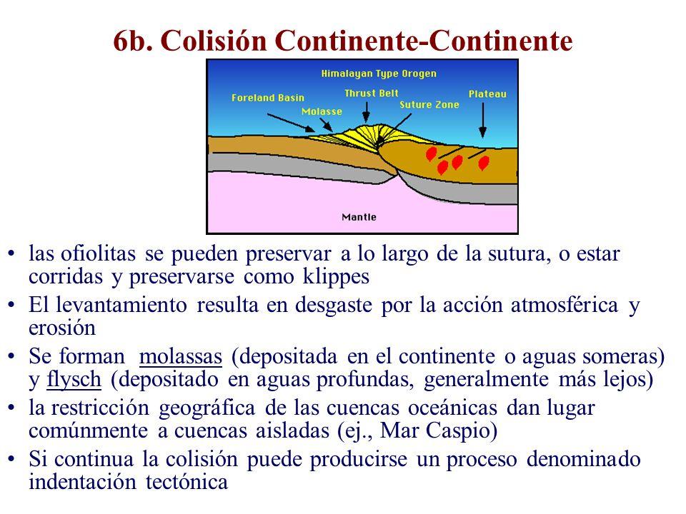 6b. Colisión Continente-Continente las ofiolitas se pueden preservar a lo largo de la sutura, o estar corridas y preservarse como klippes El levantami