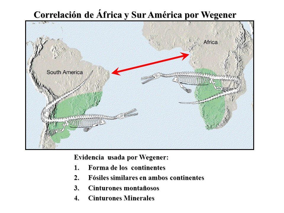 Correlación de África y Sur América por Wegener Evidencia usada por Wegener: 1.Forma de los continentes 2.Fósiles similares en ambos continentes 3.Cin