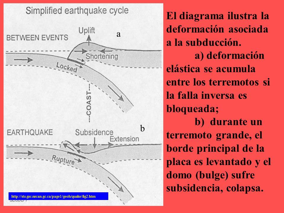 http://sts.gsc.nrcan.gc.ca/page1/geoh/quake/fig2.htm El diagrama ilustra la deformación asociada a la subducción. a) deformación elástica se acumula e