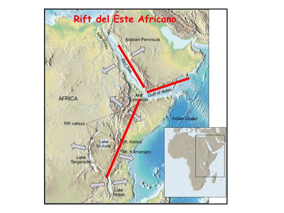 Rift del Este Africano