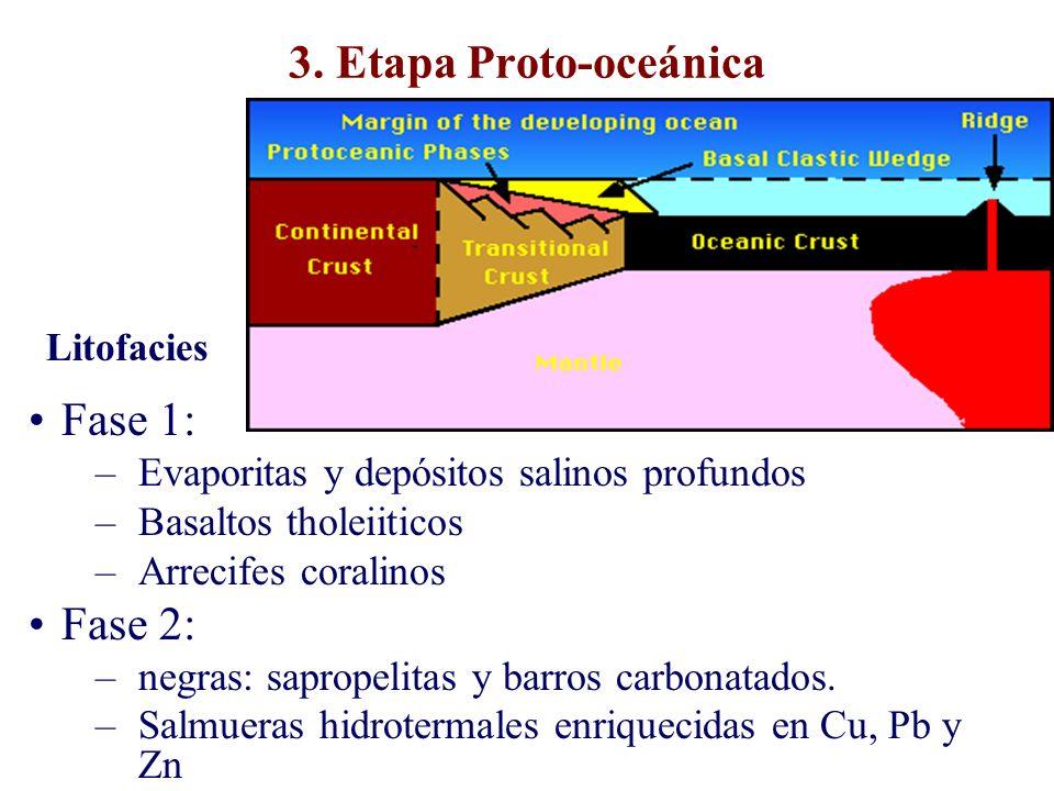 3. Etapa Proto-oceánica Fase 1: –Evaporitas y depósitos salinos profundos –Basaltos tholeiiticos –Arrecifes coralinos Fase 2: –negras: sapropelitas y