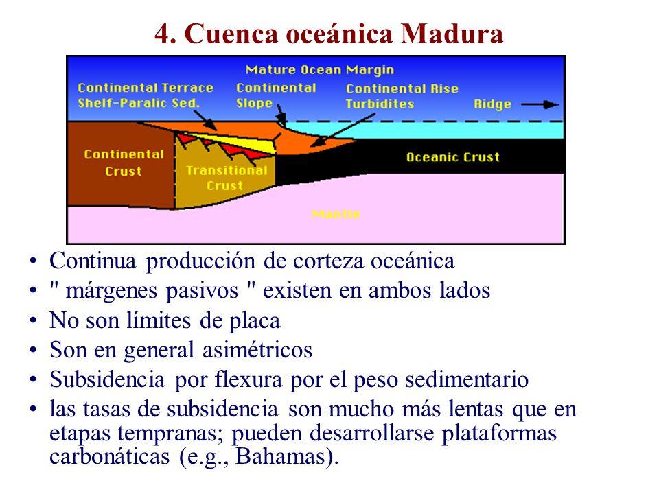 4. Cuenca oceánica Madura Continua producción de corteza oceánica