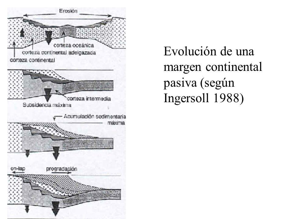 Evolución de una margen continental pasiva (según Ingersoll 1988)