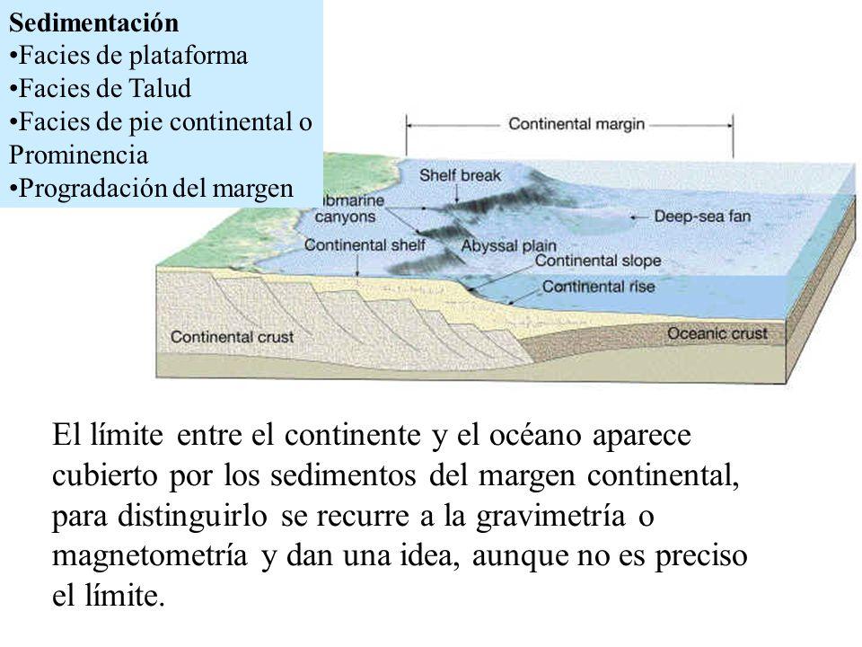 El límite entre el continente y el océano aparece cubierto por los sedimentos del margen continental, para distinguirlo se recurre a la gravimetría o