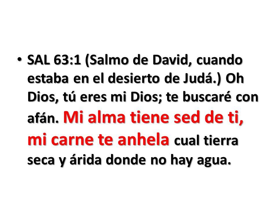 SAL 63:1 (Salmo de David, cuando estaba en el desierto de Judá.) Oh Dios, tú eres mi Dios; te buscaré con afán. Mi alma tiene sed de ti, mi carne te a