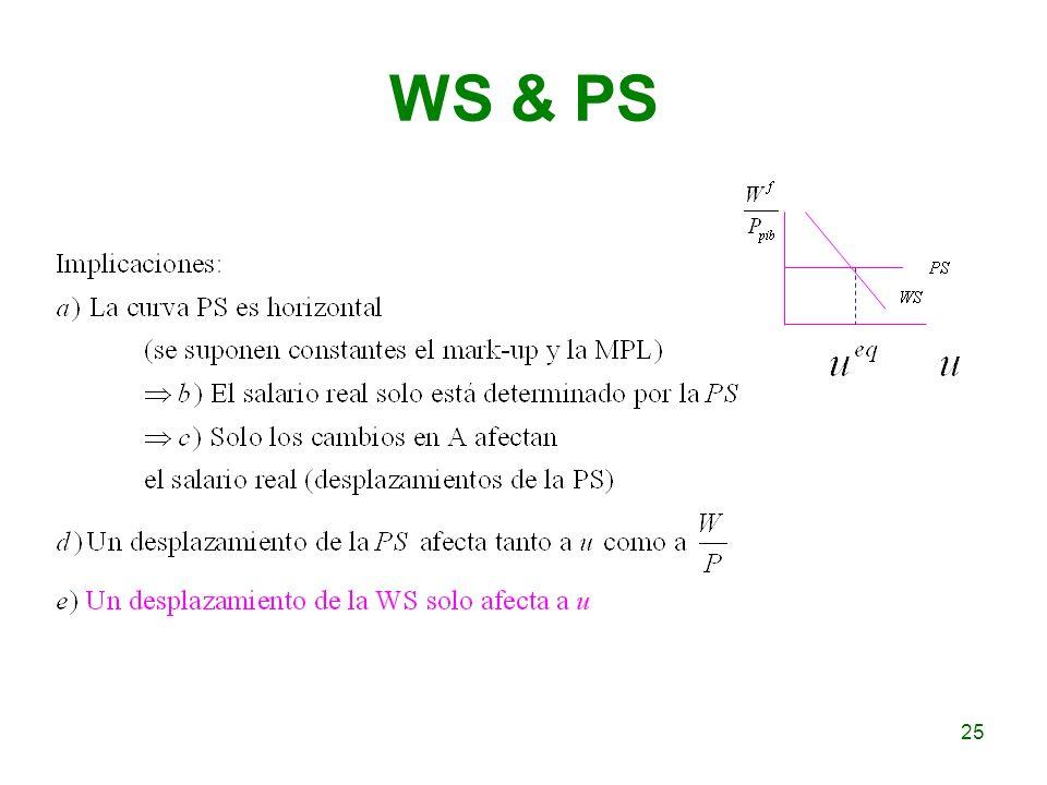 WS & PS 25