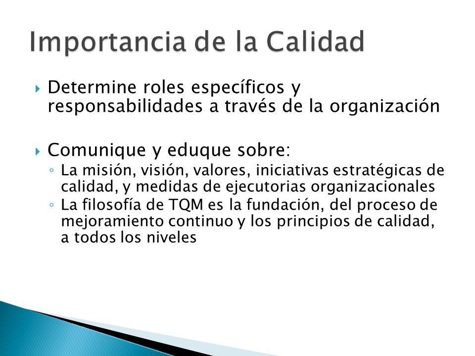 Determine roles específicos y responsabilidades a través de la organización Comunique y eduque sobre: La misión, visión, valores, iniciativas estratég