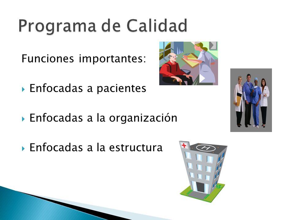 Funciones importantes: Enfocadas a pacientes Enfocadas a la organización Enfocadas a la estructura